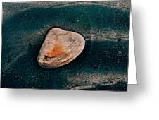 Sea Food Greeting Card