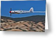 Sea Fury Fly-by Greeting Card