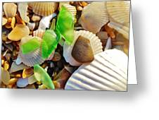 Sea Glass And Shells 17 10/2 Greeting Card