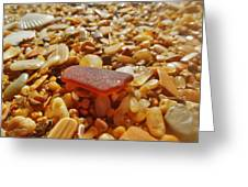 Sea Glass And Shells 3 10/13 Greeting Card