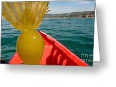 Sea Kayaking Find Greeting Card