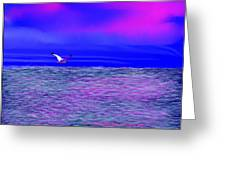 Sea. Last Rays Of Sun Greeting Card