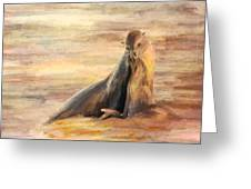 Sea Lion Mom And Pup Love On Galapagos Island Greeting Card