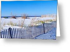 Sea Oats And Fence Along White Sand Greeting Card