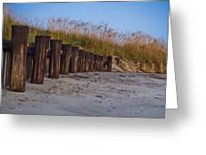 Sea Oats And Pilings Greeting Card
