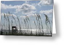 Sea Oats And Safety Greeting Card