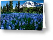 Sea Of Blue Greeting Card