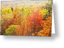Sea Of Colors Greeting Card