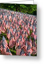 Sea Of Flags Greeting Card