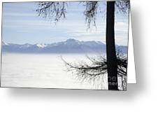 Sea Of Fog And A Tree Greeting Card