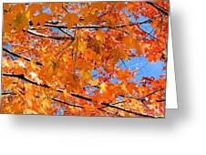 Sea Of Orange And Blue Greeting Card