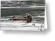 Sea Otter Profile Greeting Card