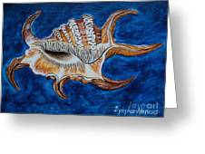 Sea Shell Original Painting Oil On Canvas No.3. Greeting Card by Drinka Mercep