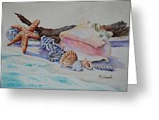 Sea Shells Two Greeting Card