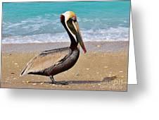 Sea Sick Sam Greeting Card