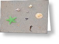Sea Swag - Green Greeting Card