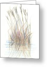 Seagrass 1 Greeting Card