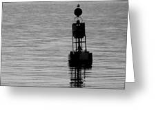 Seagull And Buoy Greeting Card
