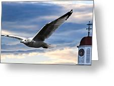 Seagull And Clock Tower Greeting Card by Bob Orsillo