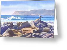 Seagull And Point Loma Greeting Card