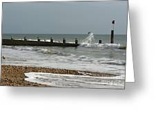 Seagull Groyne Greeting Card