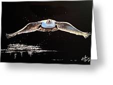 Seagull In The Moonlight Greeting Card