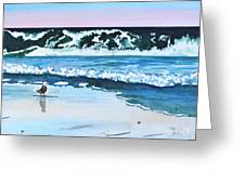 Seagull In The Sand Greeting Card