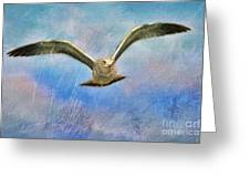 Seagull In The Storm Greeting Card
