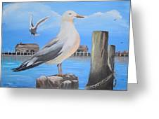 Seagull On Piling Greeting Card