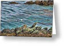 Seagull Over Rocks Greeting Card