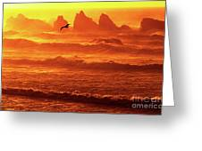 Seagull Soaring Over The Surf At Sunset Oregon Coast Greeting Card