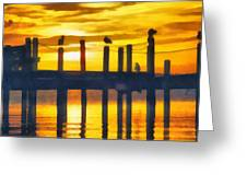 Seagull Sunset Greeting Card