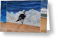 Seagull Triptych Greeting Card