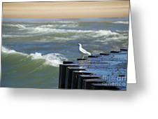 Seagull's Perch Greeting Card