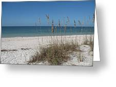 Seaoats And Beach Greeting Card