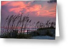 Seaoats Sunset Greeting Card