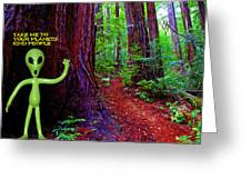 Searching For Friends Among The Redwoods Greeting Card