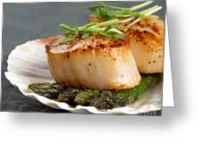 Seared Scallops Greeting Card