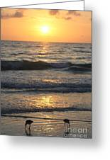 Seascape Delight Greeting Card