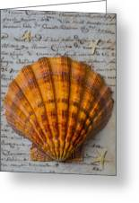 Seashell And Words Greeting Card