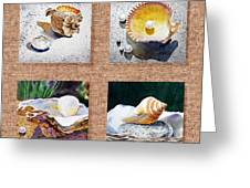 Seashell Collection I Greeting Card