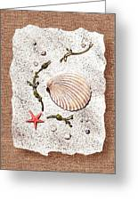 Seashell With Pearls Sea Star And Seaweed  Greeting Card