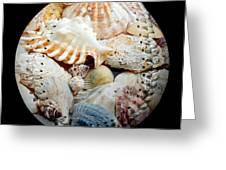 Seashells Baseball Square Greeting Card