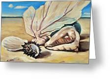 Seashore Shell Still Life Greeting Card