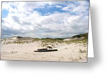 Seaside Driftwood And Dunes Greeting Card