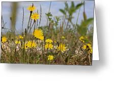 Seaside Flora Greeting Card