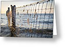 Seaside Nets Greeting Card