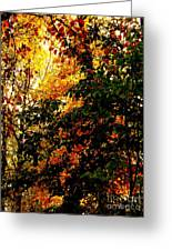 Season Of Color Greeting Card