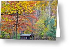 Seasonal Sensation Greeting Card