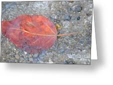 Seasonal Signage Greeting Card